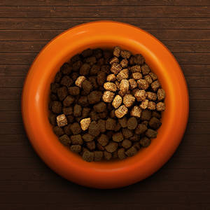 Natures recipe grain free salmon dry dog food 4 lb walmart today make a bowl with super tasty natures recipe grain free food and of your puppys current food forumfinder Gallery